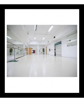 Sala 2 de 110 m2